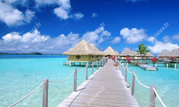 toiture paille Bora Bora