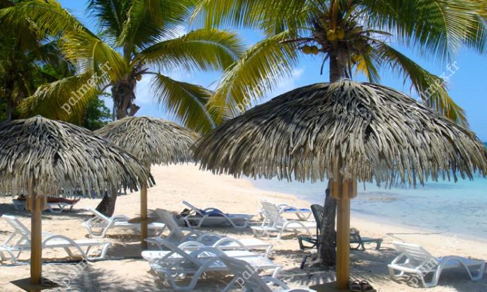 GUADALUPE | Playa