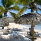 parasol paille exotique Guadeloupe