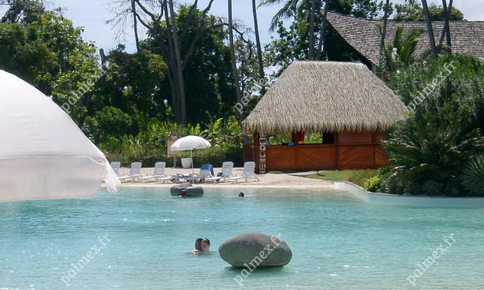 feuille de palmier artificielle Tahiti