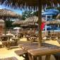 parasol exotique paille Cobac Parc