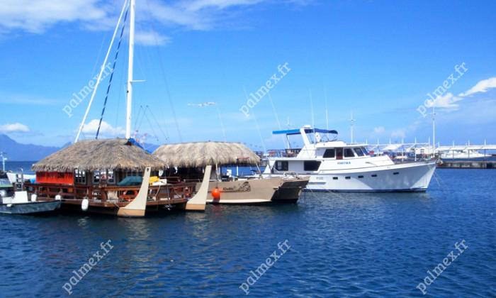feuilles artificielles palmier bateau Tahiti