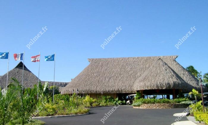 feuille palmier toit hotel MOOREA