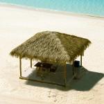 toit de gazebo en feuilles de palmier ile caimans