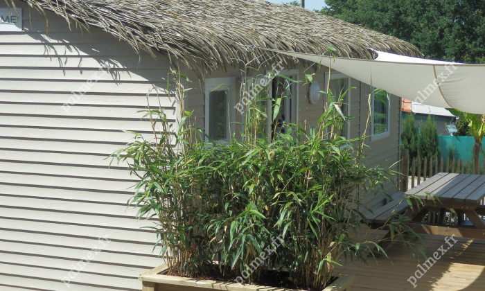 mobil home toit exotique Sanguinet