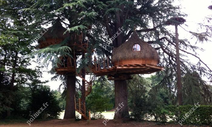 toiture en paille cabane dans les arbre