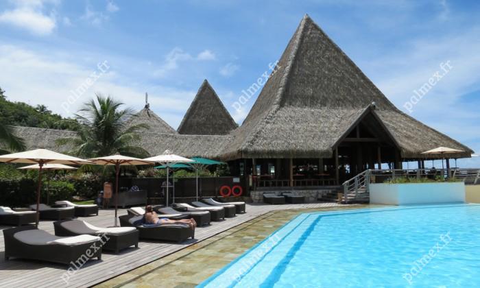 toiture synthétique en feuille de palmier MOOREA