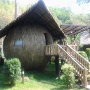 Bird's Nest Villa
