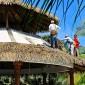 toit en feuille de palmier Buenaventura