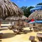 parasol en paille synthetique Cobac Parc Bretagne