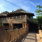 ZooParc de Beauval with exotic roofing Palmex