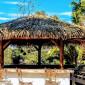 Abri jardin Tahiti palm