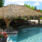 Private Tahiti palm